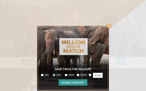 Screenshot of Home Page awf.org - African Wildlife Foundation | - captured Dec. 3, 2017
