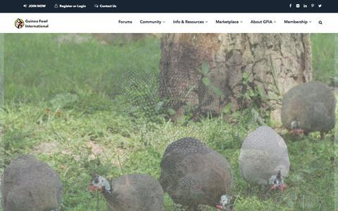 Screenshot of Home Page guineas.com - Home 1 | Guinea Fowl International Association - captured May 16, 2018