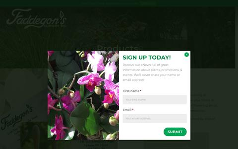 Screenshot of Products Page faddegons.com - Faddegon's Nursery, Inc. Products | Faddegon's Nursery, Inc. - captured Oct. 10, 2018