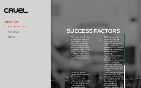 Screenshot of About Page cruel.global - Cruel - SUCCESS FACTORS - captured May 23, 2017