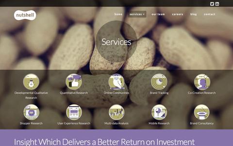 Screenshot of Services Page nutshellmr.com - Services - NutshellMR - captured Feb. 15, 2016