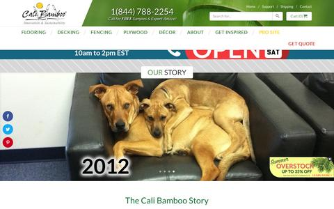 Screenshot of About Page calibamboo.com - The Cali Bamboo Story - Two Surfers, One Dream - captured Aug. 6, 2016