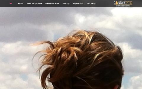 Screenshot of Home Page gandyr.com - בית - קבוצת גנדיר - captured Jan. 25, 2016