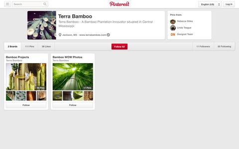 Screenshot of Pinterest Page pinterest.com - Terra Bamboo on Pinterest - captured Oct. 26, 2014