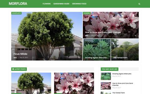 Screenshot of Home Page morflora.com - Garden Planting Guide - MORFLORA - captured June 13, 2017