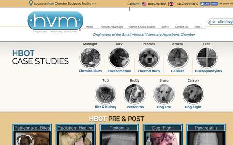 Screenshot of Case Studies Page hvmed.com - Pet Health Case Studies using Hyperbaric Oxygen Therapy - HBOT - captured Sept. 11, 2017