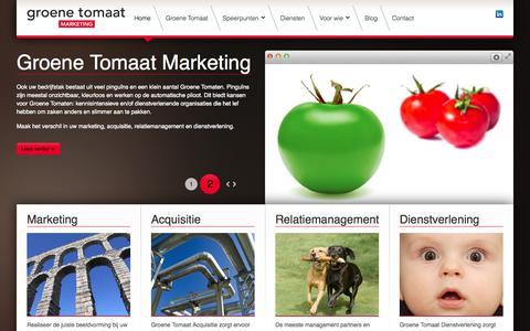 Screenshot of Home Page groenetomaat.nl - Home - Groene Tomaat Marketing - captured Jan. 29, 2015