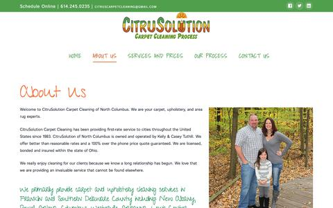 Screenshot of About Page citruscarpet.com - About Us - CitruSolution - captured Dec. 9, 2019