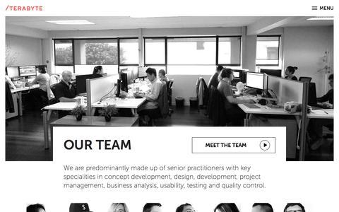 Screenshot of Team Page terabyte.co.nz - New Zealand Digital Agency - Auckland | Terabyte Interactive - captured Oct. 21, 2017