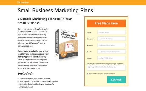 Screenshot of Landing Page thrivehive.com - Small Business Marketing Plans | ThriveHive - captured Oct. 27, 2014