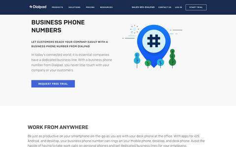 Local Business Phone Numbers   Dialpad
