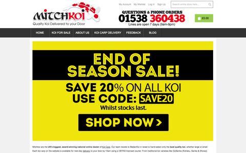 Screenshot of Home Page mitchkoi.co.uk - Mitchkoi: Award-Winning Online Koi Carp Dealers - captured Sept. 30, 2014