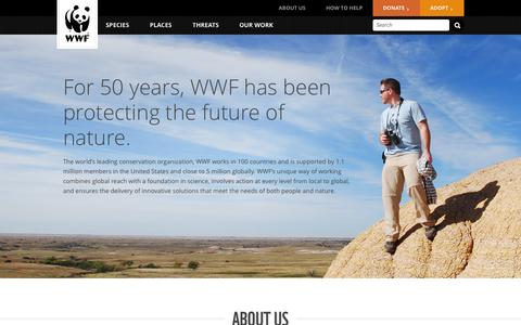 About Us | WWF