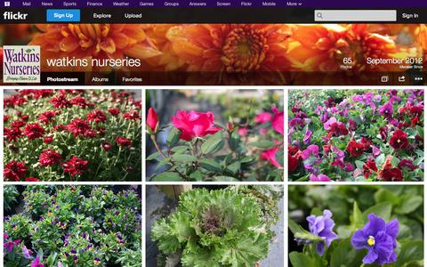 Screenshot of Flickr Page flickr.com - Flickr: watkins nurseries' Photostream - captured Oct. 26, 2014