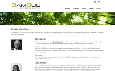 Screenshot of Team Page bamboo.nl - BamBoo Consultants | Ons team - captured Nov. 22, 2016