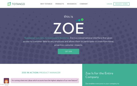 Screenshot of totango.com - This is Zoe | Totango | Customer Success Software - captured May 29, 2017