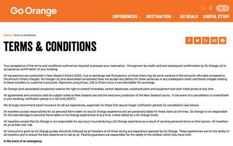 Screenshot of Terms Page goorange.co.nz - Go Orange NZ: Terms & Conditions, cancellation policy - captured June 30, 2018