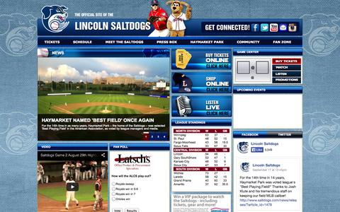 Screenshot of Home Page saltdogs.com captured Oct. 8, 2014