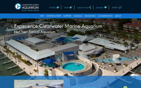 Screenshot of About Page seewinter.com - About | Clearwater Marine Aquarium - captured Aug. 11, 2018