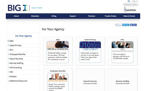 Screenshot of Products Page biginy.org - For Your Agency - For Your Agency - captured Oct. 15, 2017
