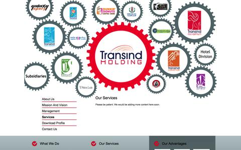 Screenshot of Services Page transindgroup.com - Our Services - captured Oct. 4, 2014