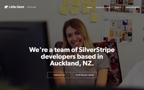 Little Giant - SilverStripe developers Auckland, NZ | SilverStripe CMS