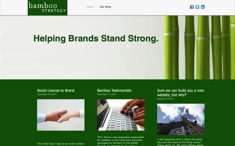 Screenshot of Home Page bamboostrategy.com - Bamboo Strategy - captured Jan. 24, 2015