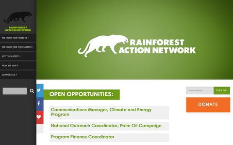 Screenshot of Jobs Page ran.org - Jobs - Rainforest Action Network - captured Dec. 2, 2015