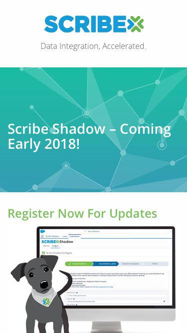 Scribe Shadow Promotion | Scribe Software