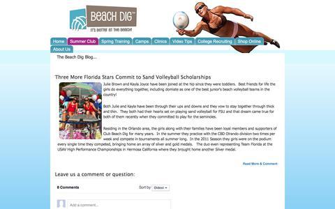 Screenshot of Blog beachdig.com - Beach Dig | Beach Volleyball Training, - captured Feb. 7, 2016