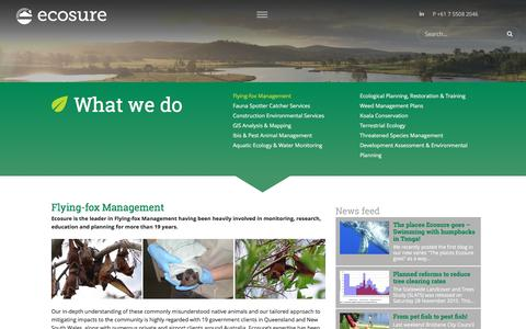 Screenshot of Services Page ecosure.com.au - Flying-fox Management | Ecosure - captured Dec. 7, 2015