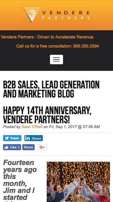 Screenshot of Team Page  venderepartners.com - B2B Lead Generation and Content Marketing Blog | leadership