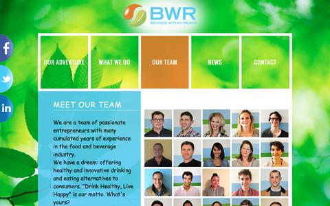 Screenshot of Team Page bwrgroup.com - profile | BWR - Brands Within Reach - captured Feb. 8, 2016