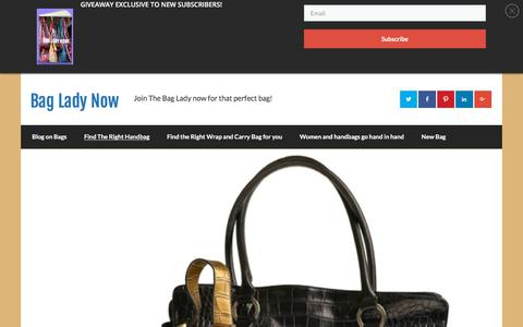 Screenshot of Home Page bagladynow.com - Bag Lady Now - captured Feb. 15, 2018