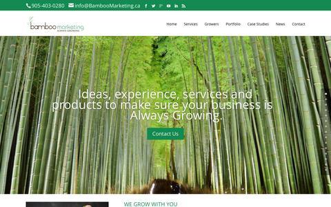 Screenshot of Home Page bamboomarketing.ca - Home | Bamboo Marketing - captured Feb. 7, 2016