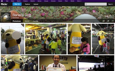 Screenshot of Flickr Page flickr.com - Flickr: bananadogs' Photostream - captured Nov. 3, 2014