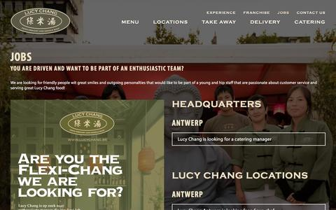 Screenshot of Jobs Page lucychang.be - Jobs | Lucy Chang - captured Jan. 31, 2016