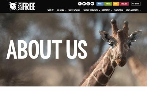 Screenshot of About Page bornfree.org.uk - About Born Free: International animal charity - captured Sept. 25, 2018