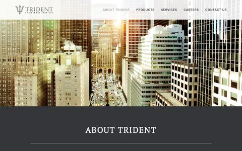 Screenshot of Menu Page tridentbrokerageservices.com - About Trident — Trident Brokerage Services - captured Dec. 16, 2016