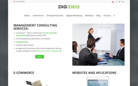 Screenshot of Home Page digideo.co - management consulting, ecommerce consulting Digideo - captured Jan. 15, 2016