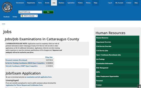 Screenshot of Jobs Page cattco.org - Jobs & Exams in Cattaraugus County | Cattaraugus County - captured Oct. 28, 2016