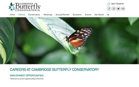 Screenshot of Jobs Page cambridgebutterfly.com - Careers - Cambridge Butterfly Conservatory - captured July 1, 2018