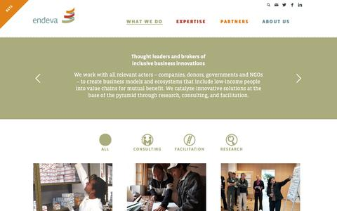 Screenshot of Services Page endeva.org - What We Do - Endeva - captured Dec. 15, 2015