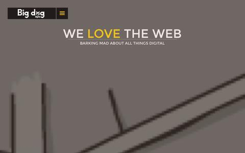 Screenshot of Home Page bigdog.ie - Big Dog Digital | Web Design and Development Dublin Agency - captured Oct. 5, 2014