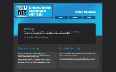 Screenshot of Services Page teambts.com - Business Growth Controls - captured June 16, 2017