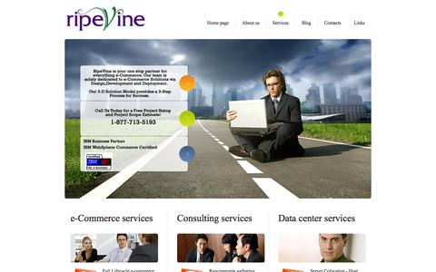 Screenshot of Services Page ripevine.com - RipeVine e-Commerce Consulting Services - captured Oct. 7, 2014