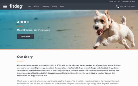 Screenshot of About Page fitdog.com - Our Story | Sports Classes, Daycare, Boarding and Training - captured Oct. 10, 2018