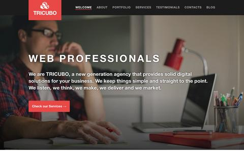 Screenshot of Home Page tricubo.com - TRICUBO - Web Professionals - captured Oct. 7, 2014