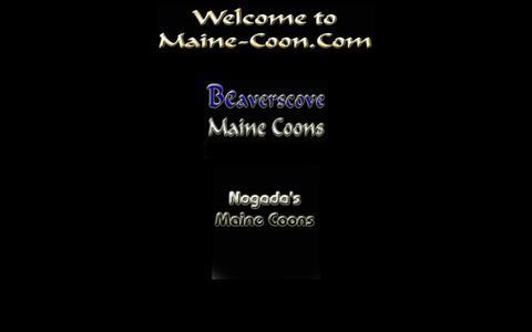 Screenshot of Home Page maine-coon.com - Maine Coons, Maine Coon, Maine Coon Babys, mainecoon, mainecoons, Katzen, eben ***Beaverscove Maine Coons*** - captured June 11, 2016