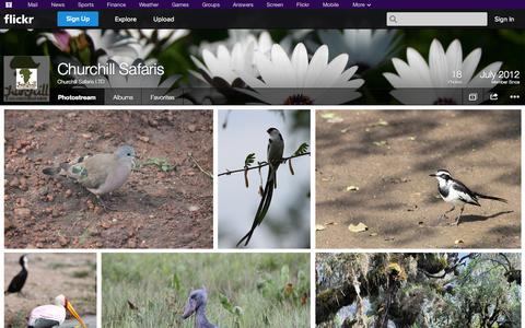 Screenshot of Flickr Page flickr.com - Flickr: Churchill Safaris LTD's Photostream - captured Oct. 22, 2014